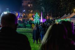 Marché de Noël + Illuminations 2019 (villenevers) Tags: marché noel 2019 illumination hiver nevers parc