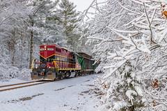 Almost Canada... (Vincent Colombo) Tags: wareham massachusetts unitedstatesofamerica snow tree geep energy train trash gp9rm winter storm freight