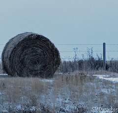 2019_12_06 Bale and Fence2 c (SMD Pics) Tags: fencedfriday fence wire barbedwire rural