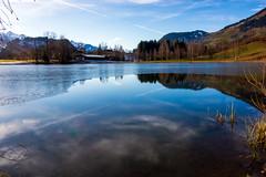 böndelsee (bernd.kranabetter) Tags: goldegg böndelsee water reflection trees sky clouds