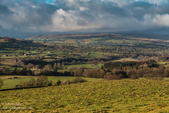 Dramatic Light over Lunedale and Mickleton from Folly Top Dec 2019 (Richard Laidler) Tags: bright buildings countydurham darkclouds darksky dramaticlight farming farmland farms fieldpatterns fields fine globalgeopark hillfarms landscape lunedale meadows mickleton northeastengland northpennines northpenninesaonb rivertees rural stormysky sunny sunshine teesdale teesdalelandscape upperteesdale winter woods