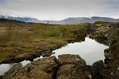 IMG_6522 (HeatherPubols) Tags: iceland europe thingvellirnationalpark