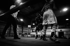 46468 - Dodge (Diego Rosato) Tags: boxe boxing pugilato boxelatina nikon d700 tamron 2470mm rawtherapee ring match incontro arbitro referre bianconero blackwhite dodge schivata