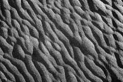 ripples (eb78) Tags: ca california blackandwhite monochrome greyscale grayscale deathvalleynationalpark mesquiteflatsanddunes abstract