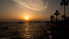 Sundowner, the white Russian. (Neil. Moralee) Tags: neilmoralee sun sunset cyprus sea waves reflection colour color orange yellow palm tree pafos paphos neil moralee olympus omd em5 sky clouds sundown evening light silhouette rocks beach