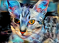 Dreaming of Mia (LotusMoon Photography) Tags: cat deepdreamgenerator postprocessed animals kitty manipulated digitalart color colorful bright dreamlike annasheradon lotusmoonphotography