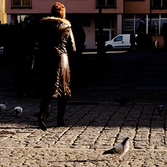 She and Pigeon (krawatj) Tags: piegon streetphoto streetphotography