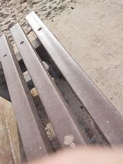 (clascaris) Tags: endoftheboardwalk bench