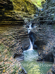 Watkins Glen 2019-130278 (myobb (David Lopes)) Tags: 2019 allrightsreserved fingerlakes ny newyork watkinsglen watkinsglenstatepark cliffs copyrighted fall foliage nature river rocks waterfall ©2019davidlopes