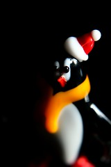 Lowkey Penguin (Keizerphoto) Tags: lookingcloseonfriday lowkey macro