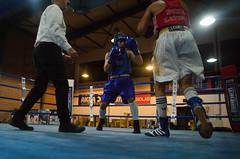 46467 - Match (Diego Rosato) Tags: boxe boxing pugilato boxelatina nikon d700 tamron 2470mm rawtherapee ring match incontro arbitro referre
