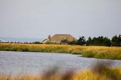 _U7A7426 (rpealit) Tags: scenery wildlife nature sandy hook gateway national recreation area