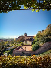 A beautiful day overlooking the hills of the Melk Abbey along the Danube River (Dennis Reyes Photography) Tags: travelphotos travel monastery abbey baroque gothic cathedral monks church fallcolors rollinghills scenicbeauty scenic scenery vienna salzburg danuberiver travelphotography wideangle iphonex iphoneography streetphotography cityscapes landscape danube melkabbey europe austria