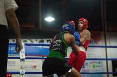 46266 - Uppercut (Diego Rosato) Tags: boxe boxing pugilato boxelatina ring match incontro nikon d700 tamron 2470mm rawtherapee arbitro referee pugno punch uppercut montante