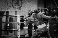 46227 - Hook (Diego Rosato) Tags: boxe boxing pugilato boxelatina nikon d700 tamron 2470mm rawtherapee ring match incontro pugno punch bianconero blackwhite hook gancio