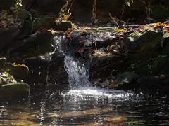 Glenn Creek Falls (03) (Thomas Cizauskas) Tags: waterfall rapids stream brook creek park urbanpark decatur georgia