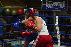 46343 - Hook (Diego Rosato) Tags: boxe boxing pugilato boxelatina nikon d700 tamron 2470mm rawtherapee ring match incontro pugno punch hook gancio