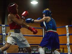 46415 - Hook (Diego Rosato) Tags: boxe boxing pugilato boxelatina nikon d700 tamron 2470mm rawtherapee ring match incontro pugno punch hook gancio