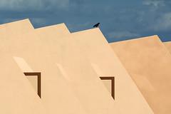 Desert house in the Gobi (Martin Vorel minimaliphoto.com) Tags: minimalism minimal minimalist minimalistic architecture architectural gobi desert bird birds mongolia geometric