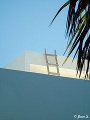 ... (Jean S..) Tags: house building tree palm palmtree mexico ladder sky blue white green
