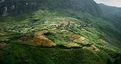 Tea Fields (CosmoClick) Tags: landscape ceylon srilanka tea plantations view cosmoclick wow