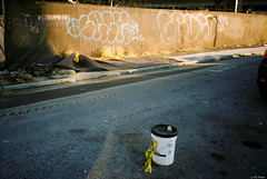 Kodak Gold 200 - 63 (kc_tinari) Tags: philadelphia philly film filmphotography lensblr kodakgold200 gold200 35mm 35mmfilm colorfilm streetphotography minoltarivazoom minoltafreedomzoomexplorer pointandshootcamera minolta