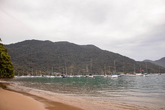 IMG_7565 (wellingtonoliveiraph) Tags: ubatuba praia mar fotografias goodvibes mataatlantica serradomar luz ligthroom amor canon viagem momentos natureza
