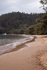 IMG_7563 (wellingtonoliveiraph) Tags: ubatuba praia mar fotografias goodvibes mataatlantica serradomar luz ligthroom amor canon viagem momentos natureza