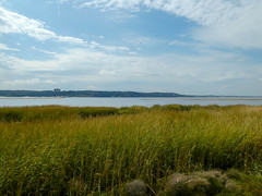 P1060789 (rpealit) Tags: scenery wildlife nature sandy hook gateway national recreation area