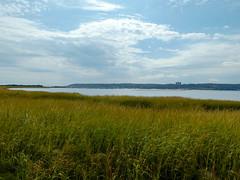 P1060788 (rpealit) Tags: scenery wildlife nature sandy hook gateway national recreation area