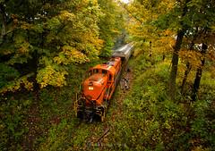Understory (Wheelnrail) Tags: alco rs3 locomotive railroad rail road rails fall autumn color batten kill battenkill rr new york