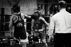45763 - Hook (Diego Rosato) Tags: boxe boxing pugilato boxelatina ring match incontro nikon d700 tamron 2470mm rawtherapee blackwhite bianconero arbitro referee pugno punch hook gancio