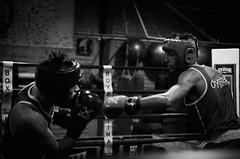46137 - Hook (Diego Rosato) Tags: boxe boxing pugilato boxelatina ring match incontro nikon d700 tamron 2470mm rawtherapee blackwhite bianconero pugno punch hook gancio dodge schivata