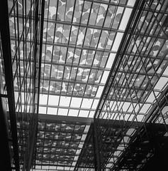 (gruefo) Tags: pnw seattle architecture street urban analog film 120mm twinlensreflex twinlens tlr c220 mamiya 6x6