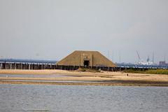 _U7A7425 (rpealit) Tags: scenery wildlife nature sandy hook gateway national recreation area