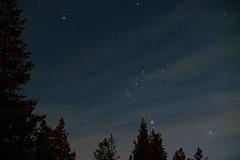 Orion M42 (TDJohnny) Tags: polarlichter polarlights astronomie astro schweden orionnebula m42 orion sweden
