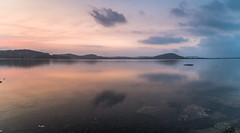 Dusky Pink Bay Waterscape with Reflections Panorama (Merrillie) Tags: daybreak smokehaze pointfrederick pastels cloudy water earlymorning bay hazy foreshore morning newsouthwales clouds haze nsw blue brisbanewater duskypink grey landscape sunrise coastal dawn outdoors waterscape nature centralcoast australia sky