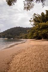 IMG_7564 (wellingtonoliveiraph) Tags: ubatuba praia mar fotografias goodvibes mataatlantica serradomar luz ligthroom amor canon viagem momentos natureza