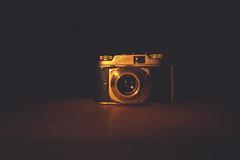 340/365 - Vintage