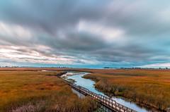 The Boardwalk (Daniel Q Huang) Tags: boardwalk sunrise clouds flowing landscape wetland marshland burst