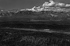 I Am Rewarded with Grandeur as I Walk Amongst the Mountains (Black & White, Denali National & State Parks) (thor_mark ) Tags: nikond800e alaska2019 day6 denalistatepark littlecoalcreektrail lookingwnw azimuth282 denali blackwhite silverefexpro2 alaskayukonranges alaskarange hayesrange westcentralalaskarange chulitnariver river dxophotolab3edited witharsenal imagecapturewitharsenal blueskies bluesskieswithclouds partlycloudy sunny nature outside landscape trees hillsideoftrees rollinghillsides alaskaroute3 bridge georgeparkshighway parkshighway mountains mountainsindistance mountainsoffindistance mountainside mountainpeak snowcapped snowonfaroffmountainpeaks clouds cloudsaroundmountainpeaks cloudsaroundmountains cloudsinvalley hiddeninclouds braidedchannels braidedriver valleybelow valleybetweenmountains alaska unitedstates