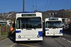 Trolleybus NAW BT-25 n°753 en L Bus - Ecole et Trolleybus NAW BT-25 n°780 en service sur la ligne 9. © Marc Germann (Marc Germann) Tags: trolleybusnawbt25 retrobus leman tl lausanne transportspublics remorques ligne9 ligne2 man articulé articulation mercedescitarobenz convois hessag hesskièpe nawhesssiemens joj2020 transport tramways bus par brise routes