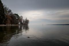 am Bodensee bei Konstanz (andreas.zachmann) Tags: bäume deu wolkendecke herbst himmel konstanz bodensee ufer wasser petershausenost badenwürttemberg deutschland