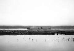 Fraser River (Kigurai.Com) Tags: 645 bronica britishcolumbia ilford hp5 analog