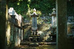 Graveyard (doktor P) Tags: nagasaki japan sofukuji