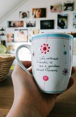 Mug (Inka56) Tags: smileonsaturday mugswithwords mug cup bokeh hand