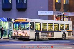 IMG_1702 (1fredmaple) Tags: hfxtransit1039 hfxtransitroute196 transitvehicle transitbus transit bus newflyerbus newflyerd40lf newflyer hfxtransit halifaxtransit scotiasquarebusterminal halifaxmetrotransit