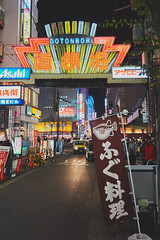 道頓崛街道2 (mike_199705) Tags: sony sonya6000 japan osaka