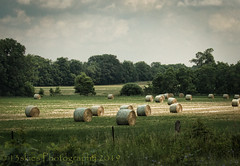 Roll Your Own (13skies) Tags: field farms countryside rolls hay rural