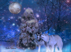 Night Snow (brillianthues) Tags: night snow moon winter blue cold dogs collage photography photmanuplation photoshop